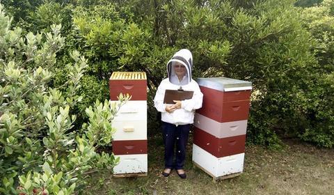 Istorie apicultor 8