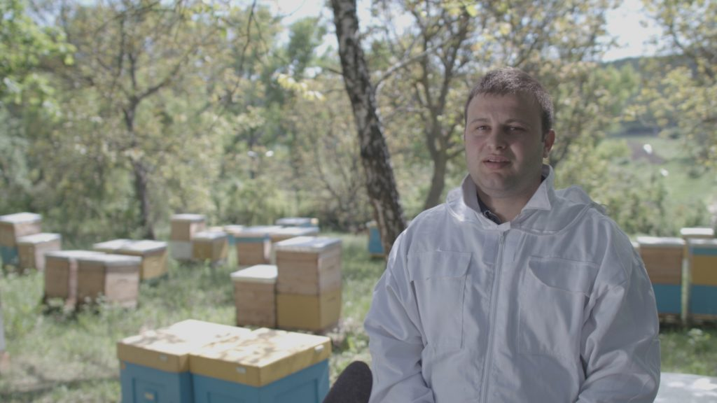 Mărturiile unui apicultor. Cât de simplu e să exporți miere în Uniunea Europeană